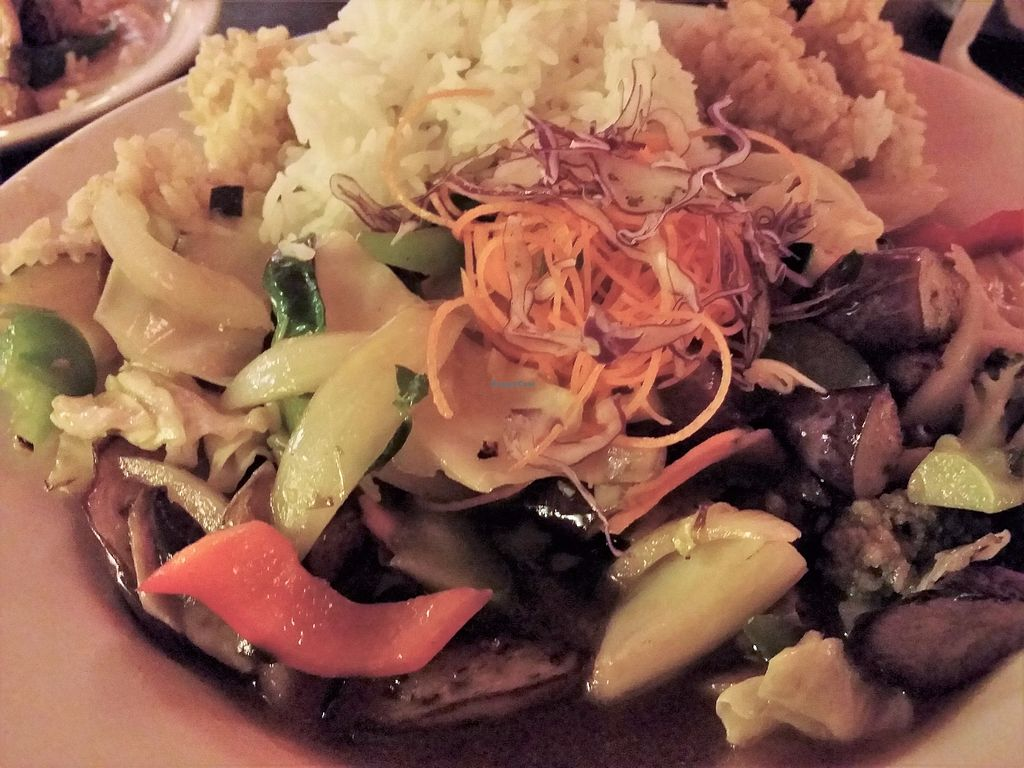 """Photo of Aloy Thai Cuisine  by <a href=""""/members/profile/purplesnowcone"""">purplesnowcone</a> <br/>veggie stir fry with rice <br/> July 26, 2017  - <a href='/contact/abuse/image/97031/284844'>Report</a>"""