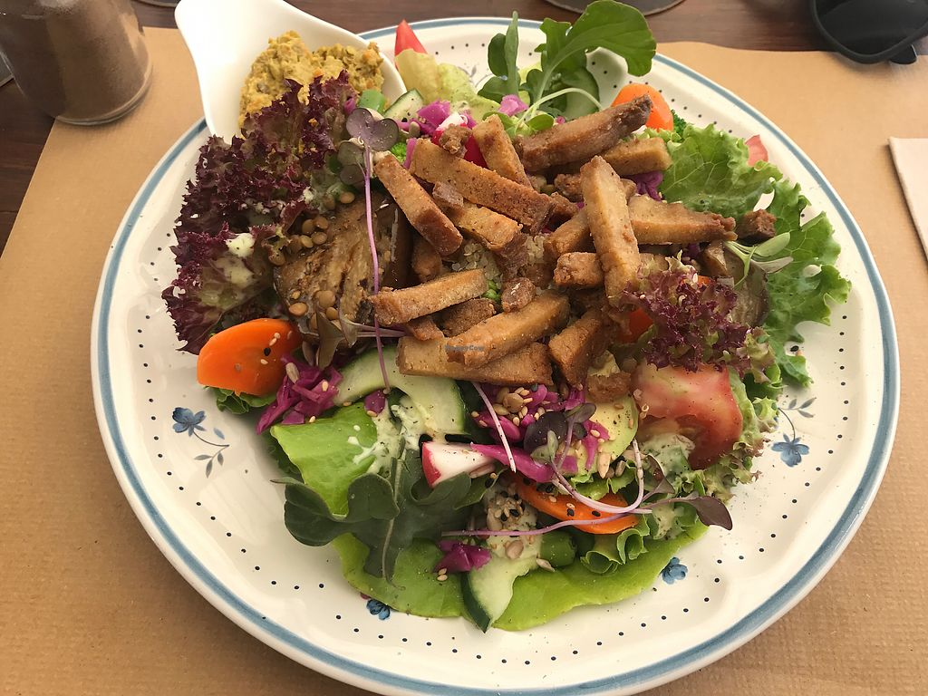 "Photo of Bistro Arbol  by <a href=""/members/profile/artczo"">artczo</a> <br/>Salat with Seitan <br/> October 10, 2017  - <a href='/contact/abuse/image/97212/313852'>Report</a>"