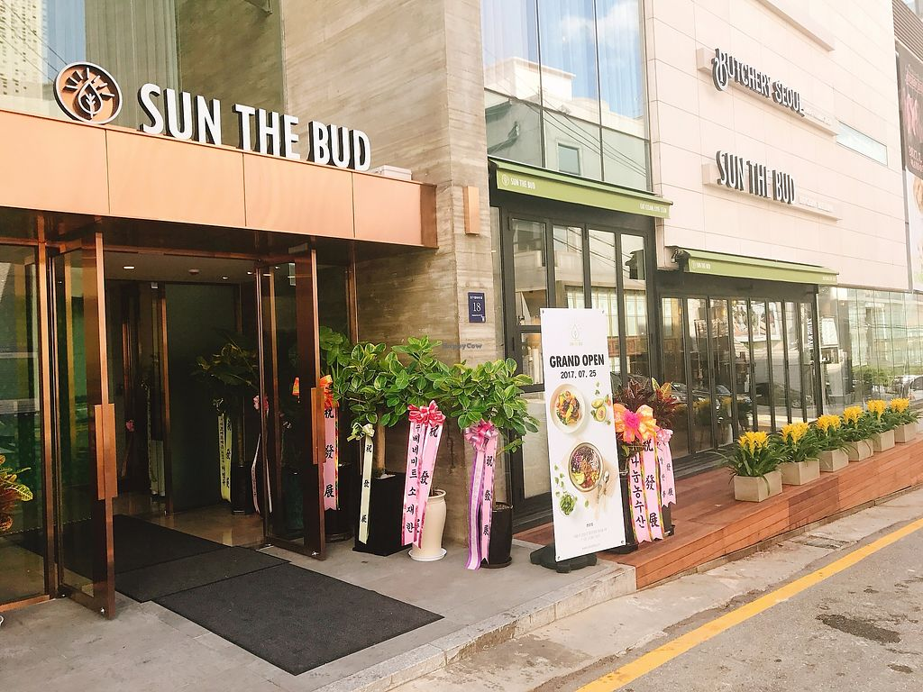 """Photo of Sun the Bud - 썬더버드  by <a href=""""/members/profile/GraceHong"""">GraceHong</a> <br/> July 31, 2017  - <a href='/contact/abuse/image/97253/286943'>Report</a>"""