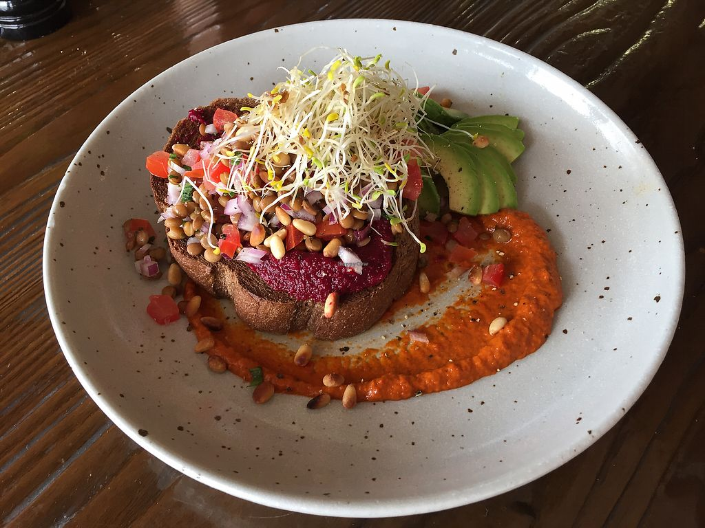 "Photo of The Silly Goat  by <a href=""/members/profile/Wuji_Luiji"">Wuji_Luiji</a> <br/>Beetroot Hummus on dark rye with brown lentil salad, harissa, toasted pine nuts and avocado instead of haloumi <br/> November 23, 2017  - <a href='/contact/abuse/image/97332/328269'>Report</a>"