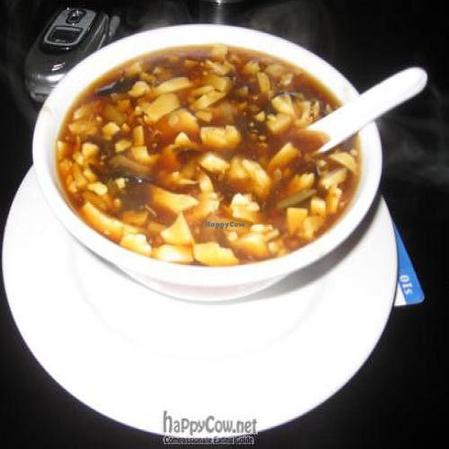 """Photo of CLOSED: House of Vegetarian  by <a href=""""/members/profile/A.Z.P."""">A.Z.P.</a> <br/>Hot and Sour Soup <br/> October 3, 2011  - <a href='/contact/abuse/image/9733/11016'>Report</a>"""