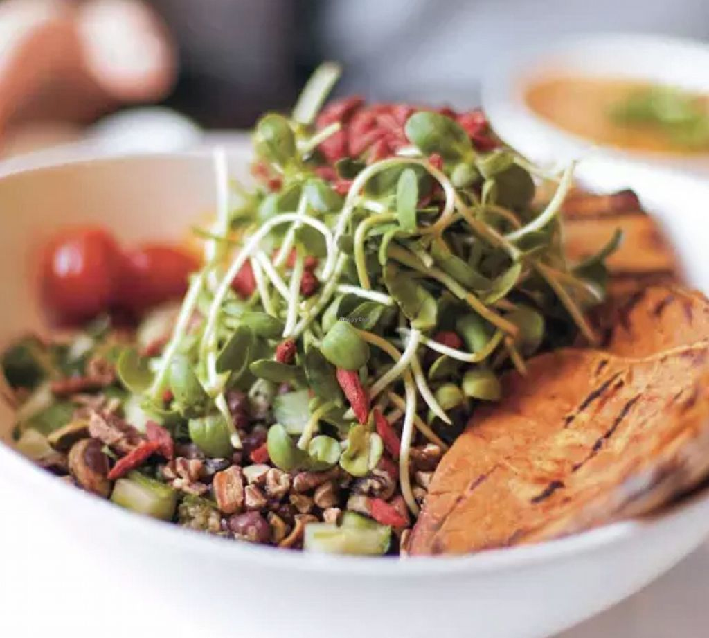"""Photo of CLOSED: Fresh México  by <a href=""""/members/profile/rancidl"""">rancidl</a> <br/>Vegan buddha bowl <br/> September 20, 2017  - <a href='/contact/abuse/image/97383/306456'>Report</a>"""