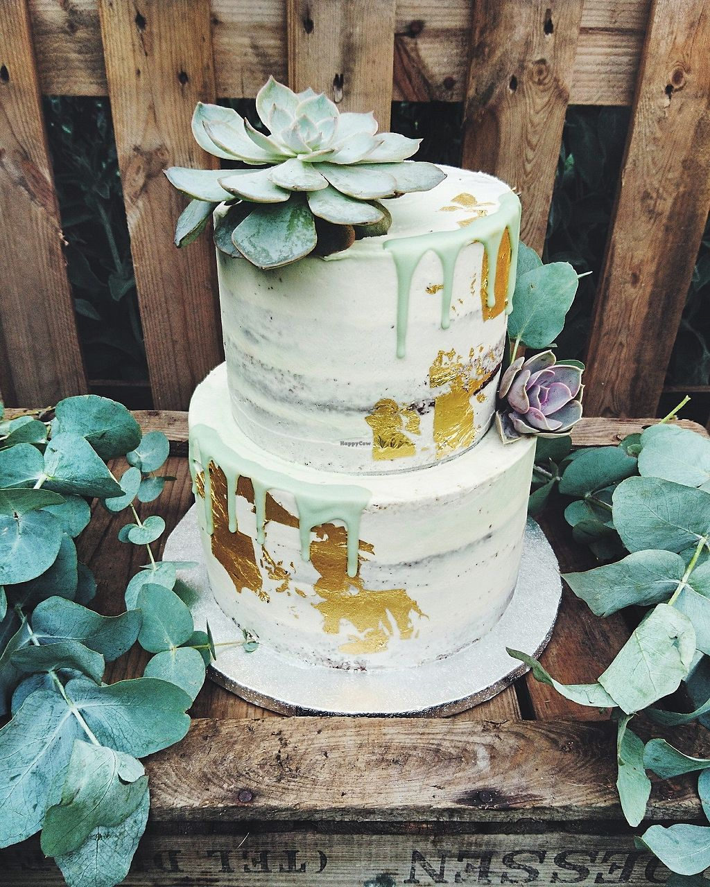 """Photo of Vic's Vegan Bakes  by <a href=""""/members/profile/VicBlandford"""">VicBlandford</a> <br/>2 tiered vegan cake <br/> July 31, 2017  - <a href='/contact/abuse/image/97391/287284'>Report</a>"""
