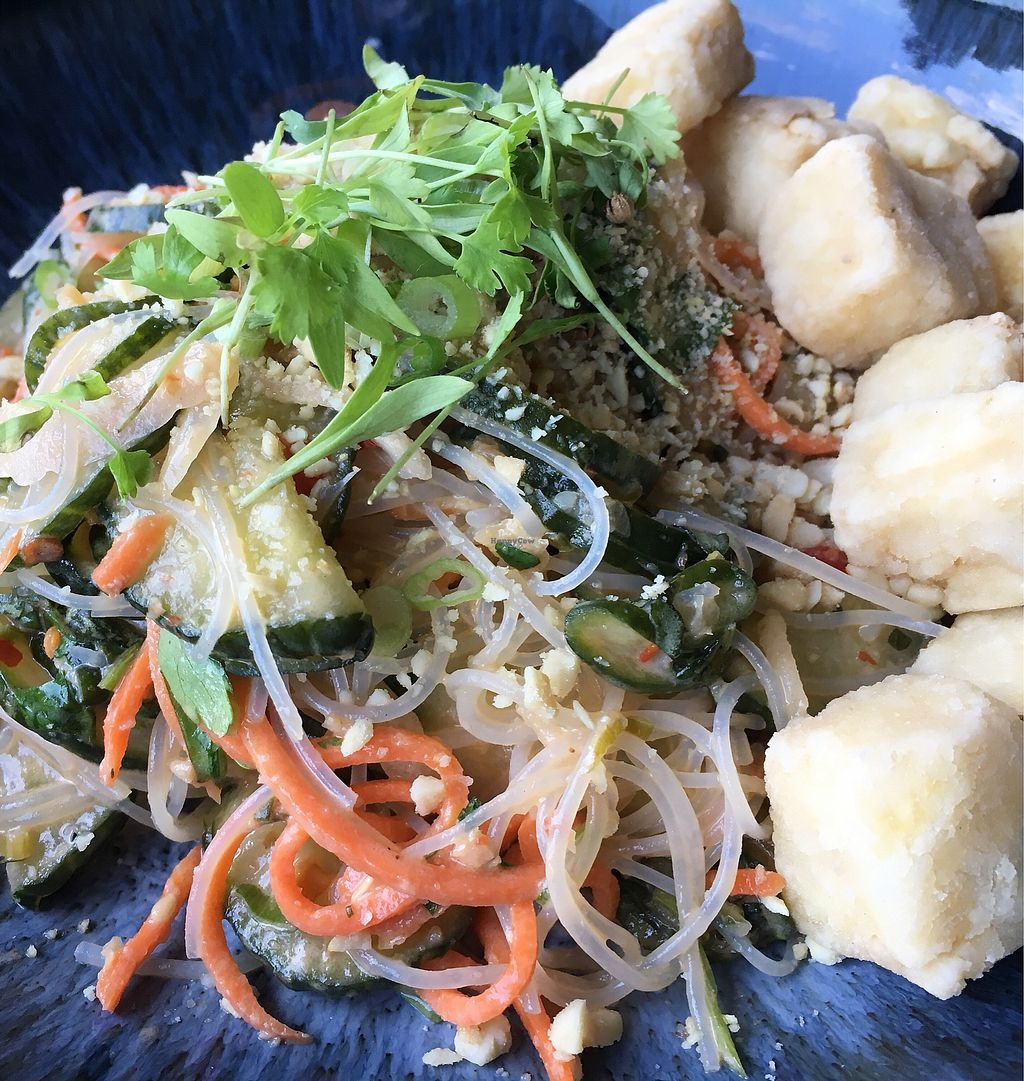 """Photo of Juju  by <a href=""""/members/profile/turtleveg"""">turtleveg</a> <br/>bean thread noodle salad with tofu <br/> July 31, 2017  - <a href='/contact/abuse/image/97481/286917'>Report</a>"""