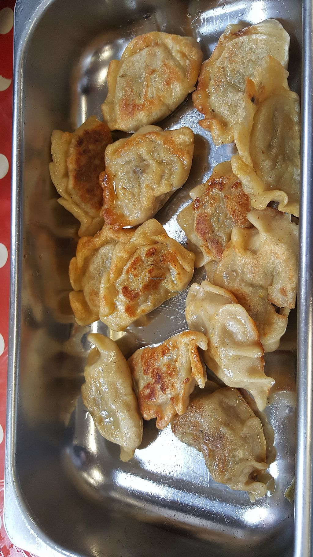 "Photo of Olo Kitchen  by <a href=""/members/profile/Clare"">Clare</a> <br/>Dumplings <br/> July 30, 2017  - <a href='/contact/abuse/image/97498/286776'>Report</a>"