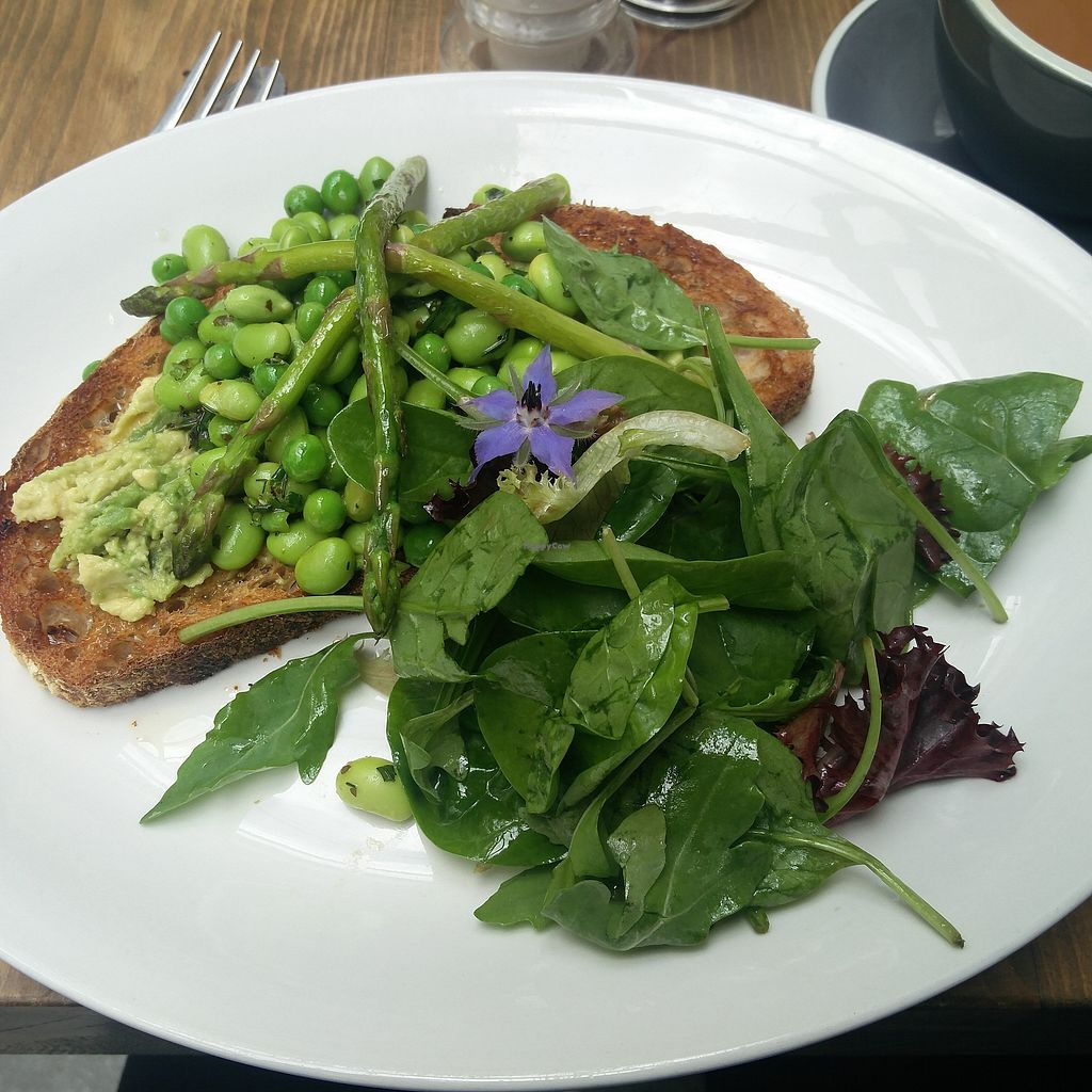 """Photo of The Old Printing Office  by <a href=""""/members/profile/AlteHenne"""">AlteHenne</a> <br/>Toasted sourdough bread with Avocado, Edamame, Peas, Asparagus and Side Salad <br/> July 31, 2017  - <a href='/contact/abuse/image/97567/287300'>Report</a>"""