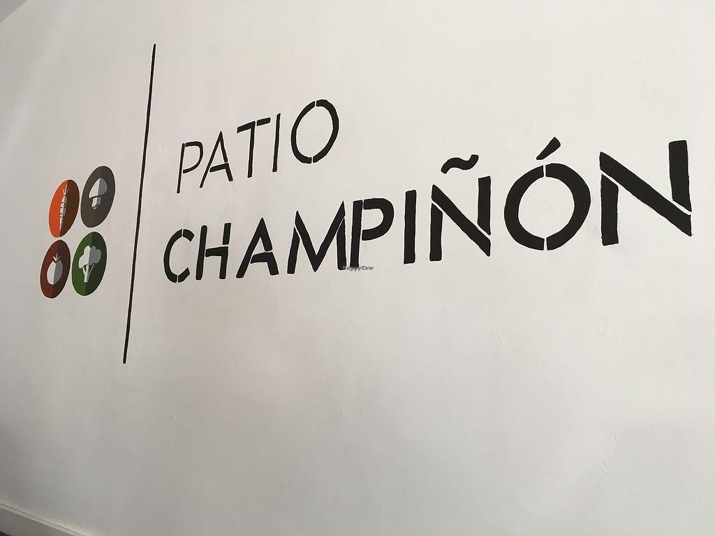 "Photo of Patio Champinon  by <a href=""/members/profile/Valesita333"">Valesita333</a> <br/>Patio champiñón  <br/> August 1, 2017  - <a href='/contact/abuse/image/97611/287638'>Report</a>"