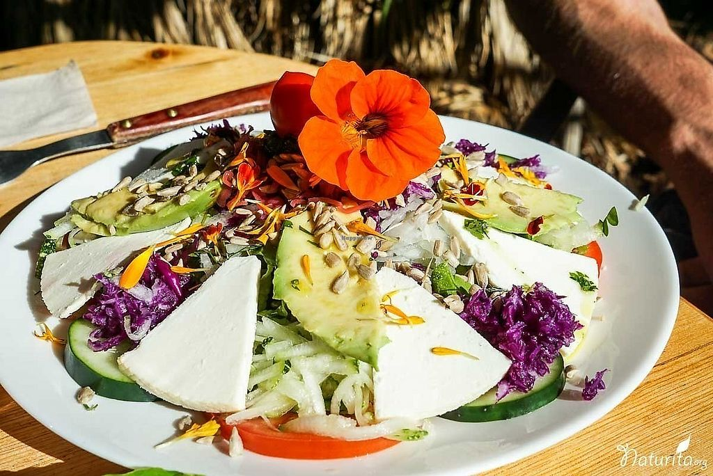 "Photo of Finca Aloe  by <a href=""/members/profile/Naturita"">Naturita</a> <br/>Salad with goat cheese <br/> January 16, 2018  - <a href='/contact/abuse/image/97756/347332'>Report</a>"