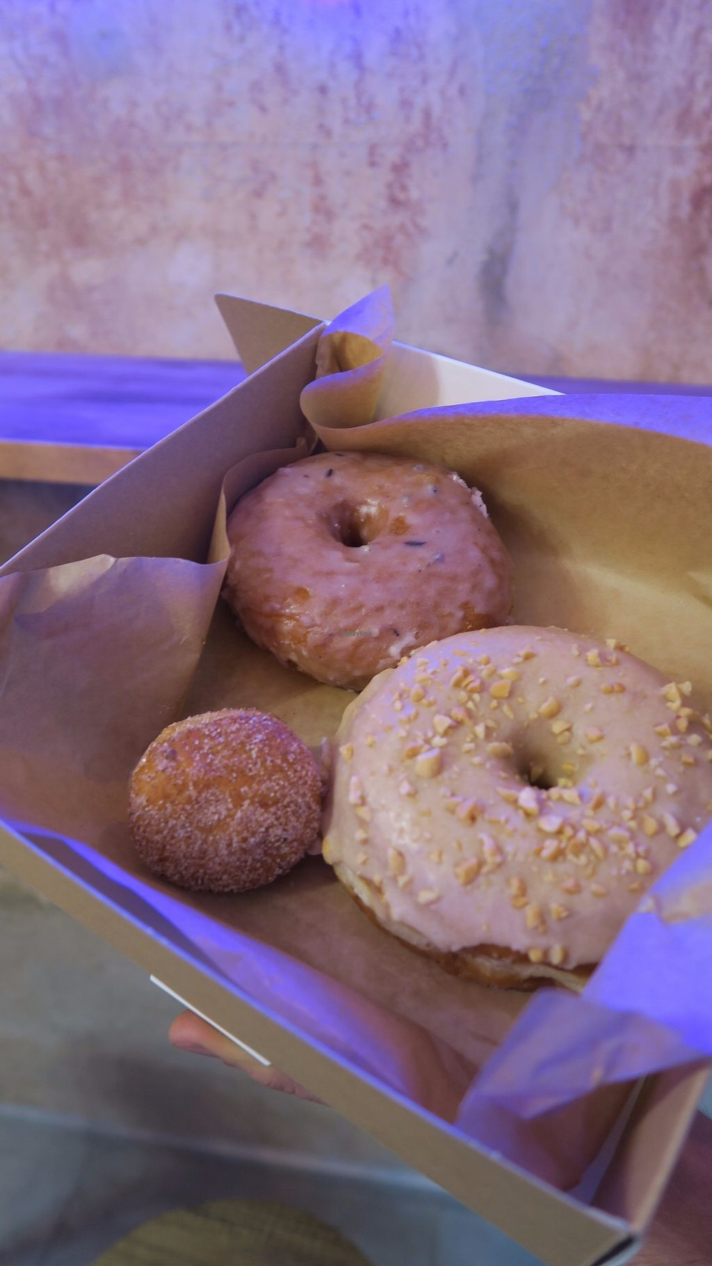 """Photo of Donut Shop  by <a href=""""/members/profile/Nikolate"""">Nikolate</a> <br/>vegan donuts and mini bun <br/> September 23, 2017  - <a href='/contact/abuse/image/97758/307373'>Report</a>"""