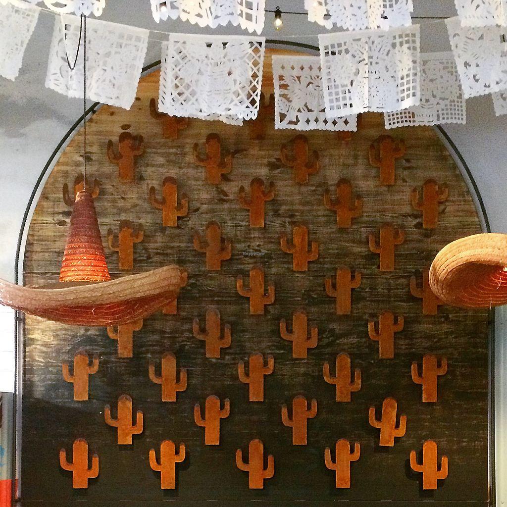 "Photo of Burrito Loco -Vitezna   by <a href=""/members/profile/kaffeekanna"">kaffeekanna</a> <br/>Strohhutlampe und Kakteen  <br/> October 24, 2017  - <a href='/contact/abuse/image/97764/318304'>Report</a>"