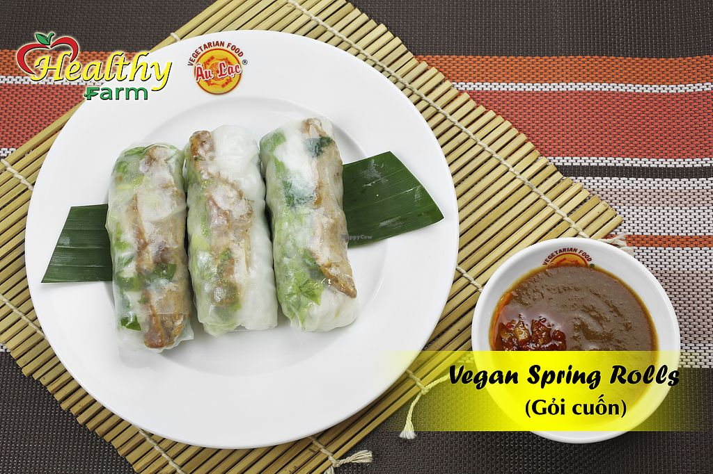 """Photo of Healthy Farm - Tran Quy District 11  by <a href=""""/members/profile/MRJayNguyen"""">MRJayNguyen</a> <br/>Vegan Spring Rolls <br/> August 17, 2017  - <a href='/contact/abuse/image/97826/293532'>Report</a>"""
