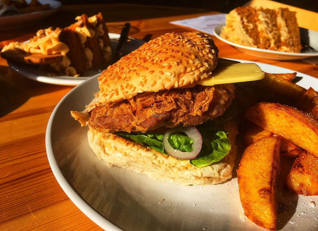 """Photo of The Willow Tree Cafe  by <a href=""""/members/profile/RockAHulaBaby"""">RockAHulaBaby</a> <br/>Seitan chicken burger and lotus biscoff cake.  <br/> February 24, 2018  - <a href='/contact/abuse/image/97937/363182'>Report</a>"""