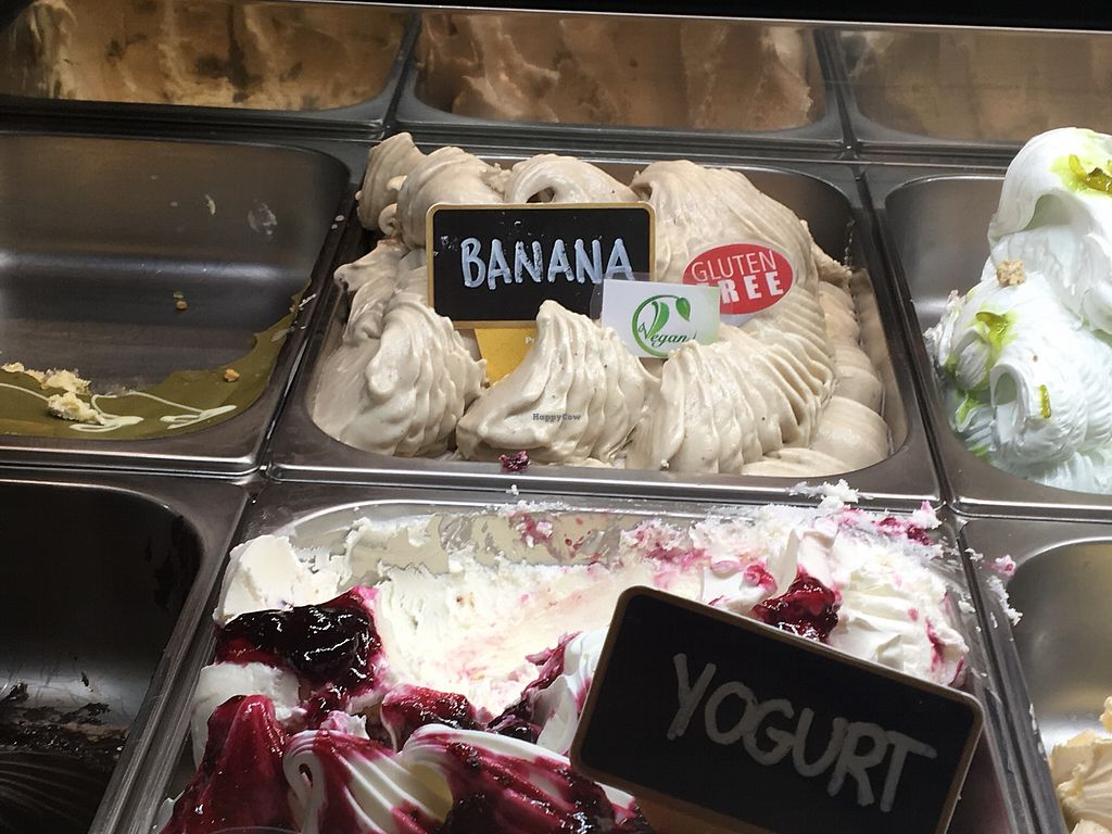 """Photo of Gelato Bar Bella  by <a href=""""/members/profile/JosieVAndr%C3%A9"""">JosieVAndré</a> <br/>Banana icecream vegan <br/> September 20, 2017  - <a href='/contact/abuse/image/98001/306540'>Report</a>"""
