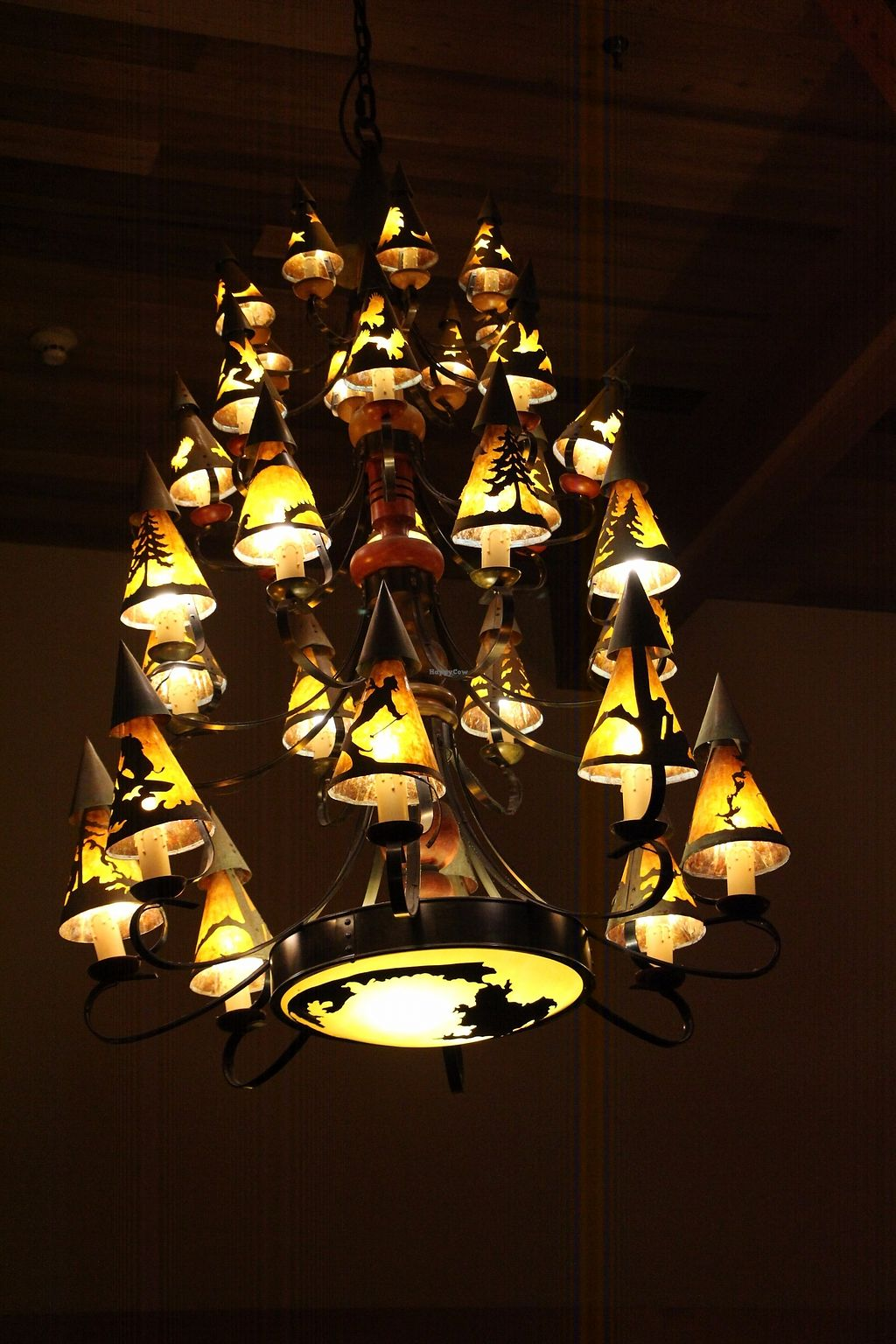"""Photo of Old Faithful Snow Lodge Obsidian Dining Room  by <a href=""""/members/profile/Drhannahj"""">Drhannahj</a> <br/>Old Faithful Snow Lodge Obsidian Dining Room <br/> August 21, 2017  - <a href='/contact/abuse/image/98015/294994'>Report</a>"""