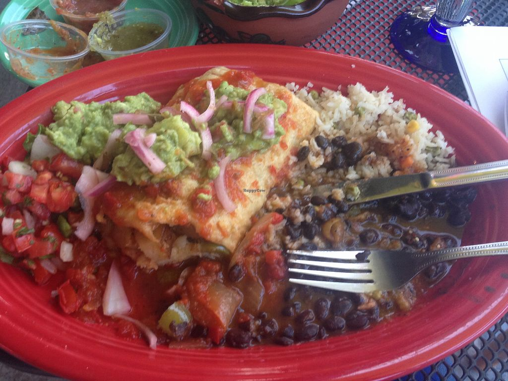 "Photo of Blue Iguana  by <a href=""/members/profile/AutumnTierra"">AutumnTierra</a> <br/>Veggie chimi sans cheese  <br/> September 7, 2017  - <a href='/contact/abuse/image/98032/301674'>Report</a>"