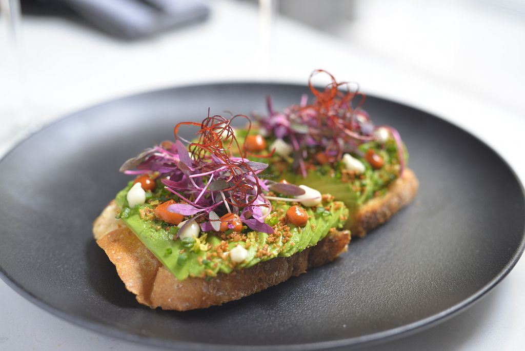 """Photo of P.S. Kitchen  by <a href=""""/members/profile/Graham123"""">Graham123</a> <br/>Avocado Toast! Soft garlic puree, harissa chili puree, cilantro and lime zest <br/> October 9, 2017  - <a href='/contact/abuse/image/98369/313420'>Report</a>"""