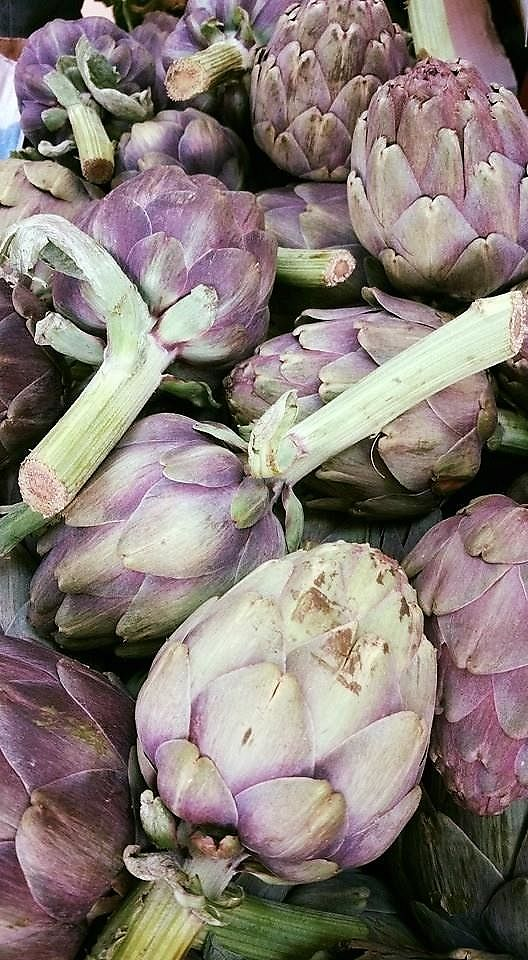 """Photo of Fresh In The City  by <a href=""""/members/profile/fitc"""">fitc</a> <br/>Artichokes <br/> August 13, 2017  - <a href='/contact/abuse/image/98387/292271'>Report</a>"""