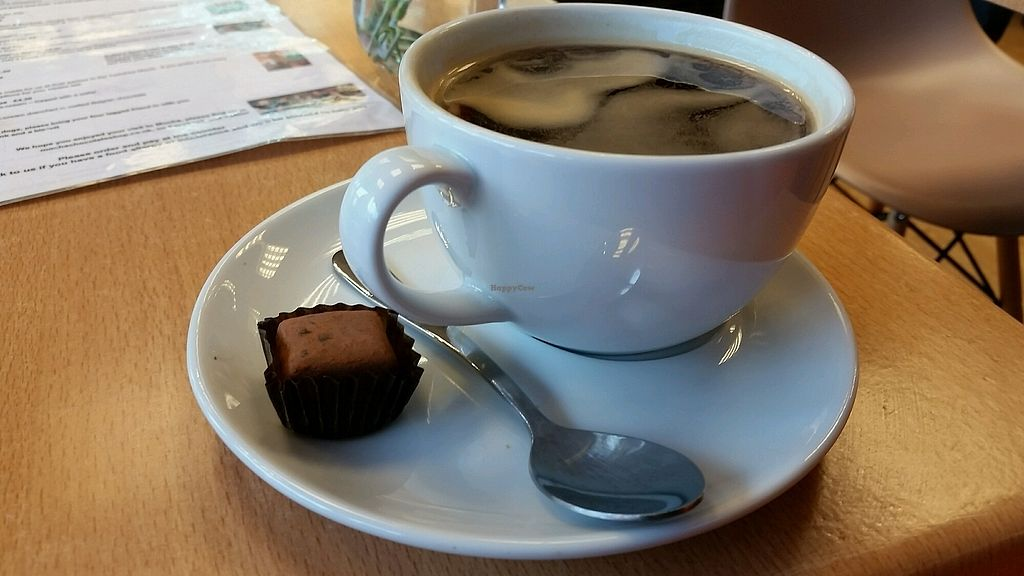 """Photo of Mocha  by <a href=""""/members/profile/LouiseLunaGalvin"""">LouiseLunaGalvin</a> <br/>Coffee cane with a vegan choc on the side! <br/> November 6, 2017  - <a href='/contact/abuse/image/98478/322425'>Report</a>"""