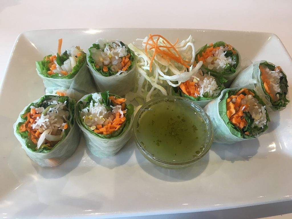 """Photo of Rice Fine Thai Cuisine  by <a href=""""/members/profile/Traveling.Plant_Eater"""">Traveling.Plant_Eater</a> <br/>Fresh Rolls <br/> August 13, 2017  - <a href='/contact/abuse/image/98569/292422'>Report</a>"""