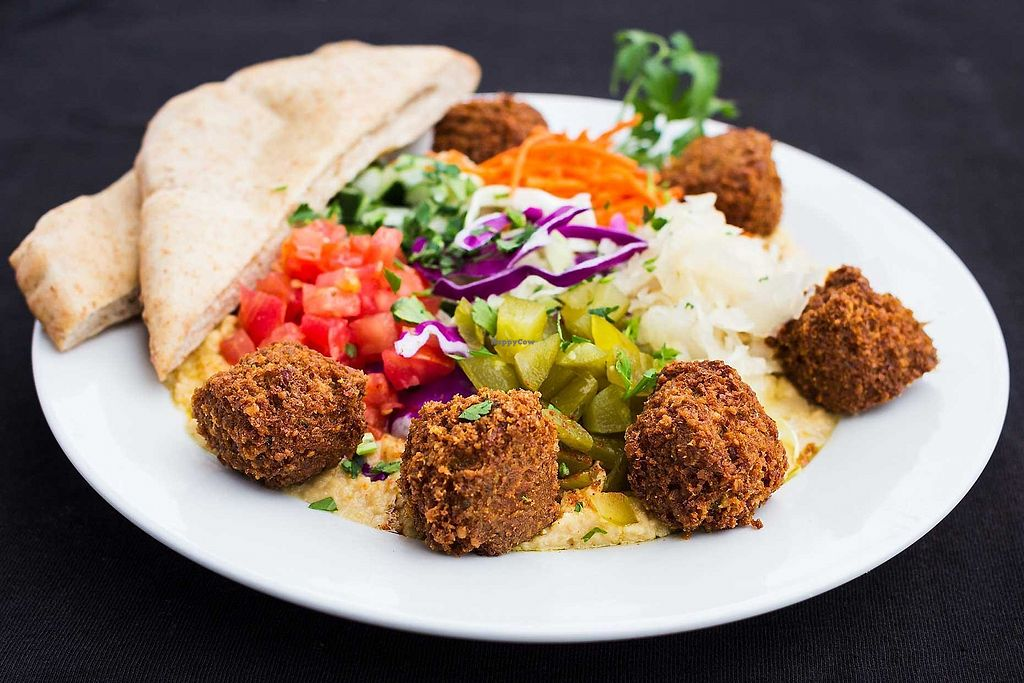 """Photo of The Flying Falafel  by <a href=""""/members/profile/FlyingFalafel"""">FlyingFalafel</a> <br/>Falafel Frisbee!  <br/> August 15, 2017  - <a href='/contact/abuse/image/98608/292935'>Report</a>"""