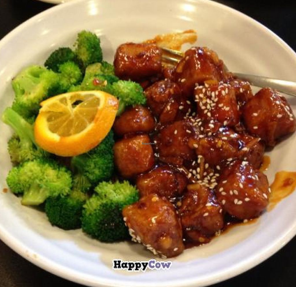 """Photo of Green Vegetarian Cuisine - Downtown  by <a href=""""/members/profile/MissMelodyAnn"""">MissMelodyAnn</a> <br/>orange tofu chicken!!!! <br/> August 19, 2013  - <a href='/contact/abuse/image/9860/194371'>Report</a>"""