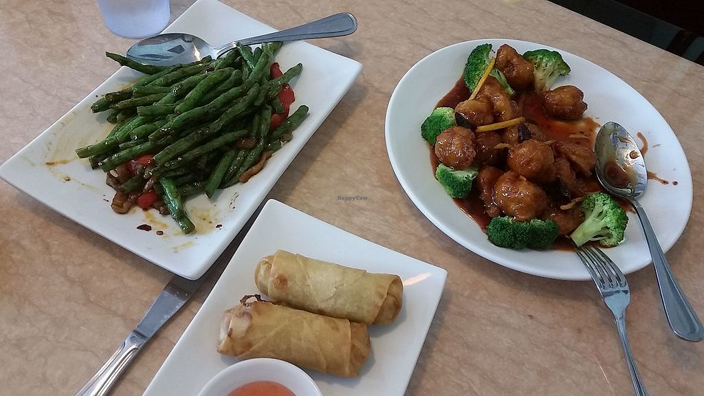 """Photo of Ma Ma Wok  by <a href=""""/members/profile/happycownerd"""">happycownerd</a> <br/>spring rolls, string bean appetizer, orange peel veg meat, and a special noodle soup made with ginger and tomato <br/> September 10, 2017  - <a href='/contact/abuse/image/98709/302776'>Report</a>"""