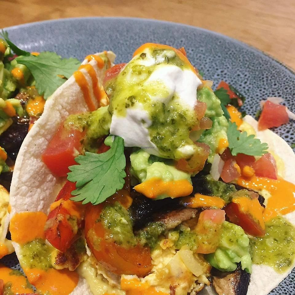 "Photo of CLOSED: Naked Treaties - Robina  by <a href=""/members/profile/community5"">community5</a> <br/>Breakfast Taco <br/> August 19, 2017  - <a href='/contact/abuse/image/98735/294505'>Report</a>"