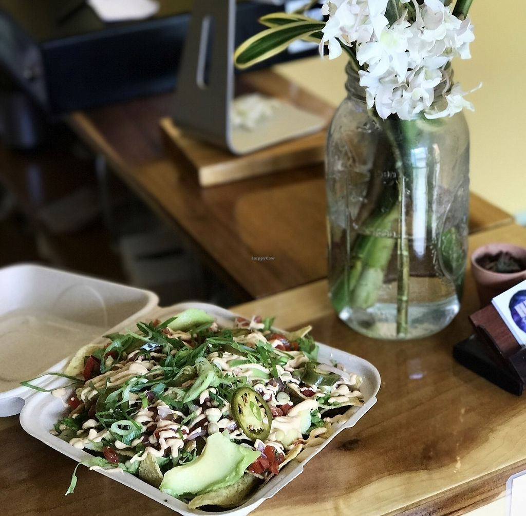 """Photo of New Moon Foods  by <a href=""""/members/profile/newmoonfoods"""">newmoonfoods</a> <br/>Living Nachos  <br/> August 17, 2017  - <a href='/contact/abuse/image/98813/293780'>Report</a>"""