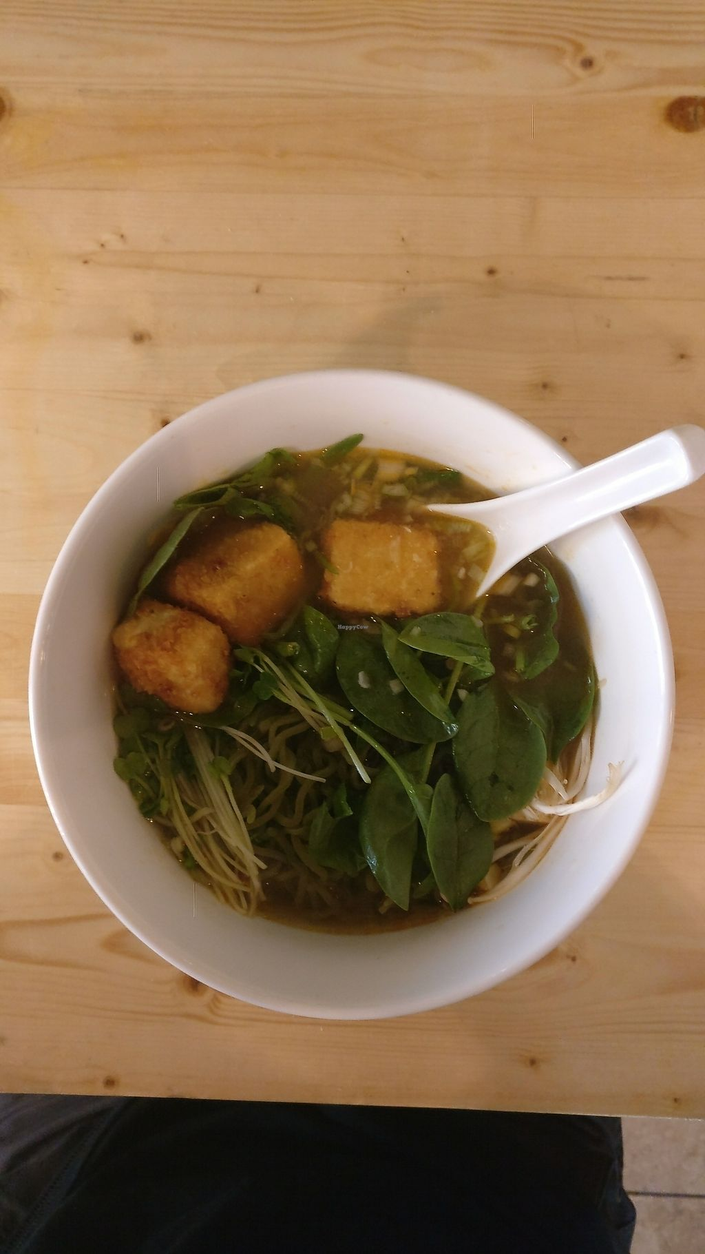 """Photo of Ramen Haus  by <a href=""""/members/profile/Nogd"""">Nogd</a> <br/>Vegan Ramen <br/> August 21, 2017  - <a href='/contact/abuse/image/99156/295287'>Report</a>"""