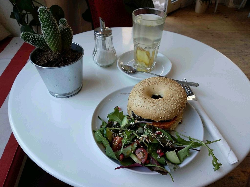 """Photo of Hom  by <a href=""""/members/profile/maltman23"""">maltman23</a> <br/>Hummus and grilled veggies bagel at Hom <br/> April 18, 2018  - <a href='/contact/abuse/image/99500/387640'>Report</a>"""
