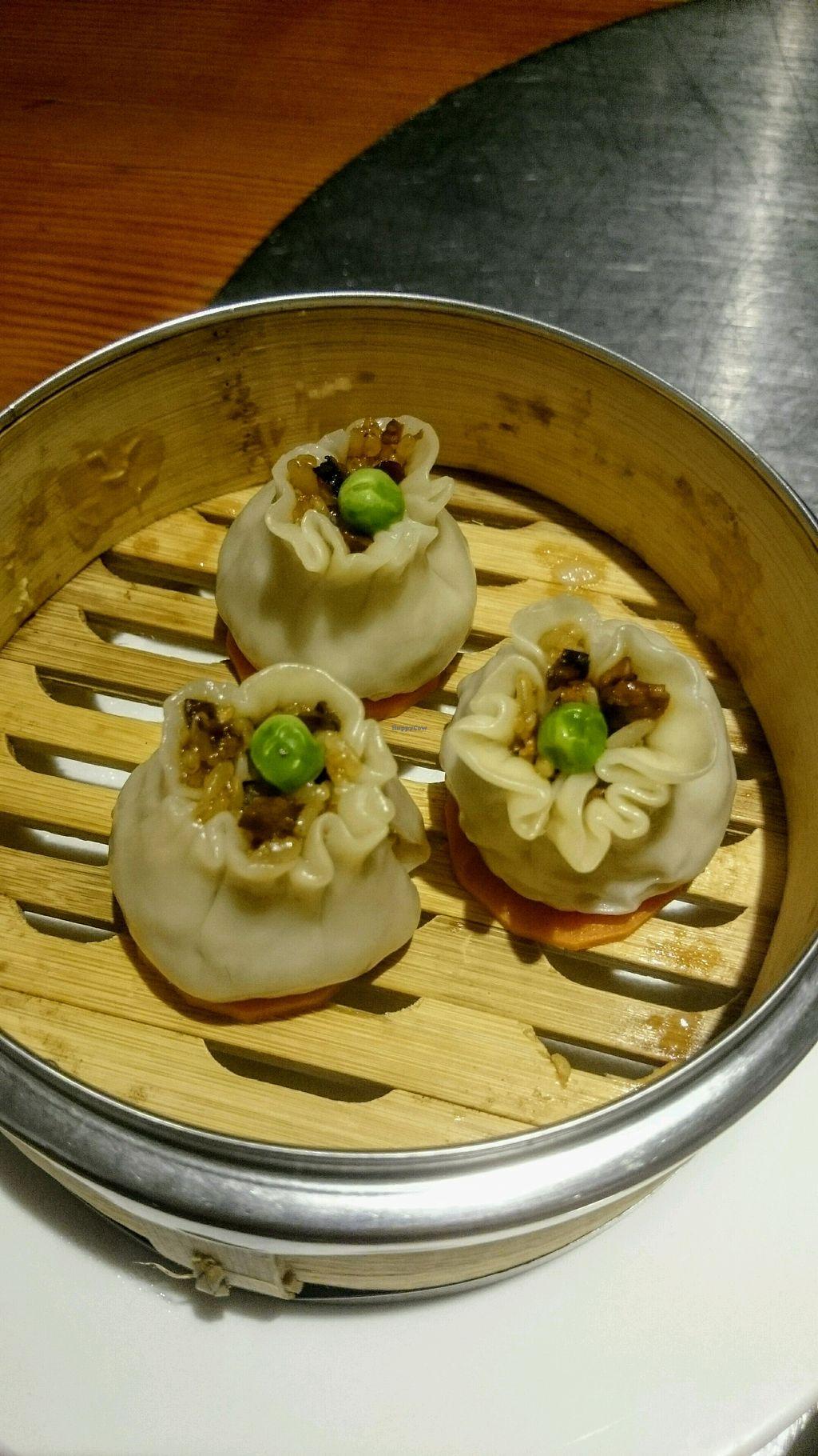 "Photo of Vegetarian Life Style - Zao Zi Shu - Gubei  by <a href=""/members/profile/MonikaZar"">MonikaZar</a> <br/>Dumplings  <br/> February 20, 2018  - <a href='/contact/abuse/image/99522/361727'>Report</a>"