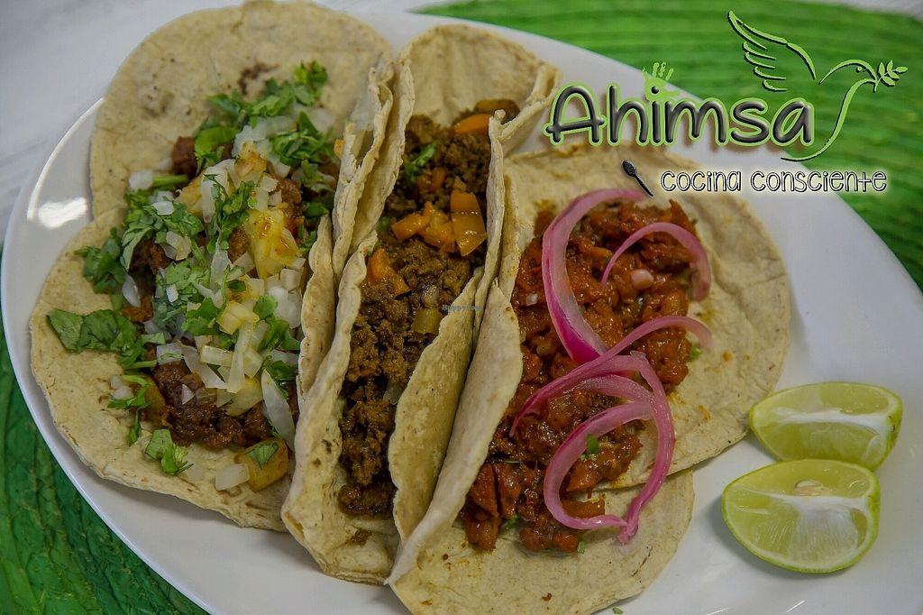 "Photo of Ahimsa Cocina Consciente  by <a href=""/members/profile/SiddhantaSiromaniDa"">SiddhantaSiromaniDa</a> <br/>vegan tacos <br/> August 25, 2017  - <a href='/contact/abuse/image/99538/297225'>Report</a>"