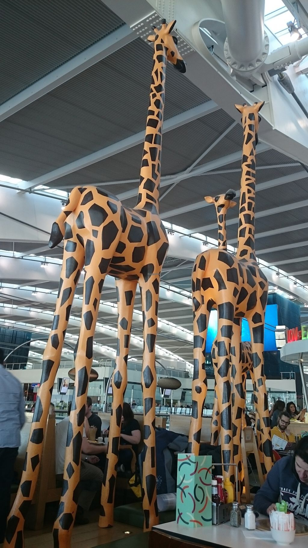 "Photo of Giraffe - Airport Airside 1  by <a href=""/members/profile/chb-pbfp"">chb-pbfp</a> <br/>The Giraffe <br/> August 25, 2017  - <a href='/contact/abuse/image/99559/297091'>Report</a>"