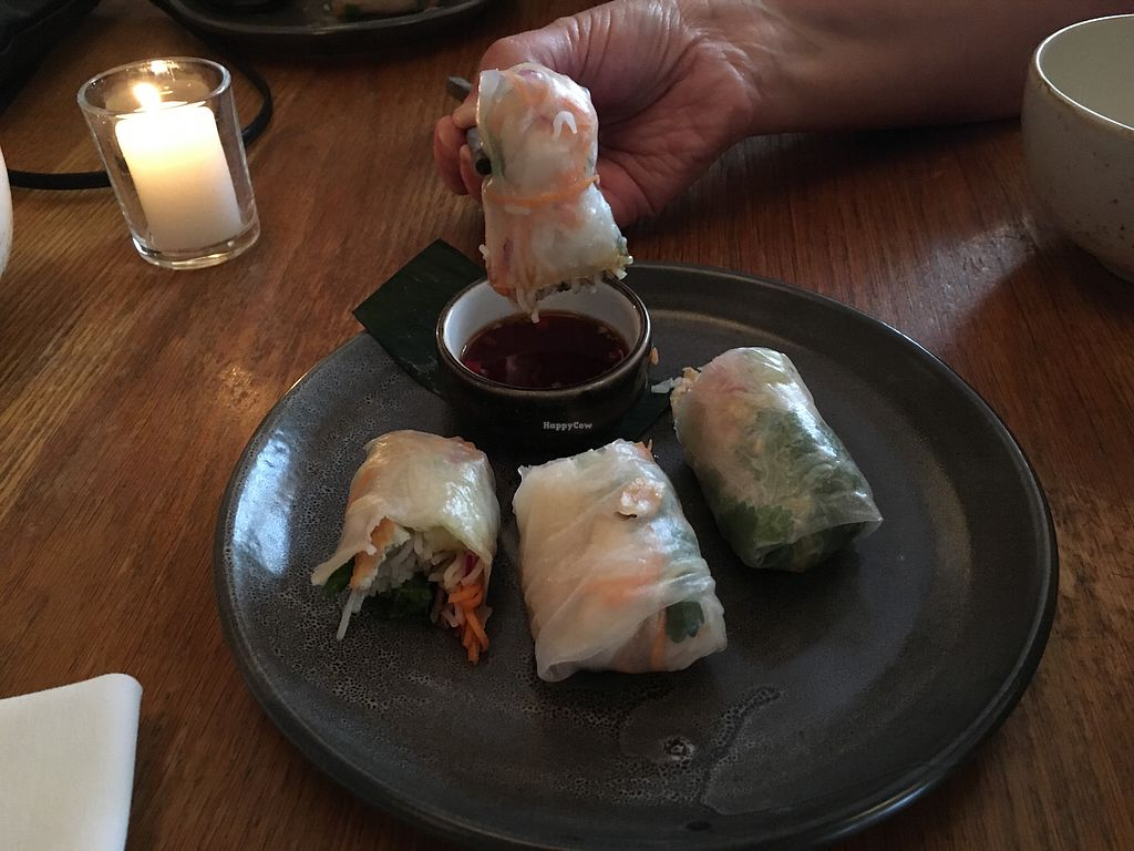 "Photo of Cafe Hanoi  by <a href=""/members/profile/Yolanda"">Yolanda</a> <br/>Rice paper rolls with tofu <br/> December 16, 2017  - <a href='/contact/abuse/image/99601/336068'>Report</a>"