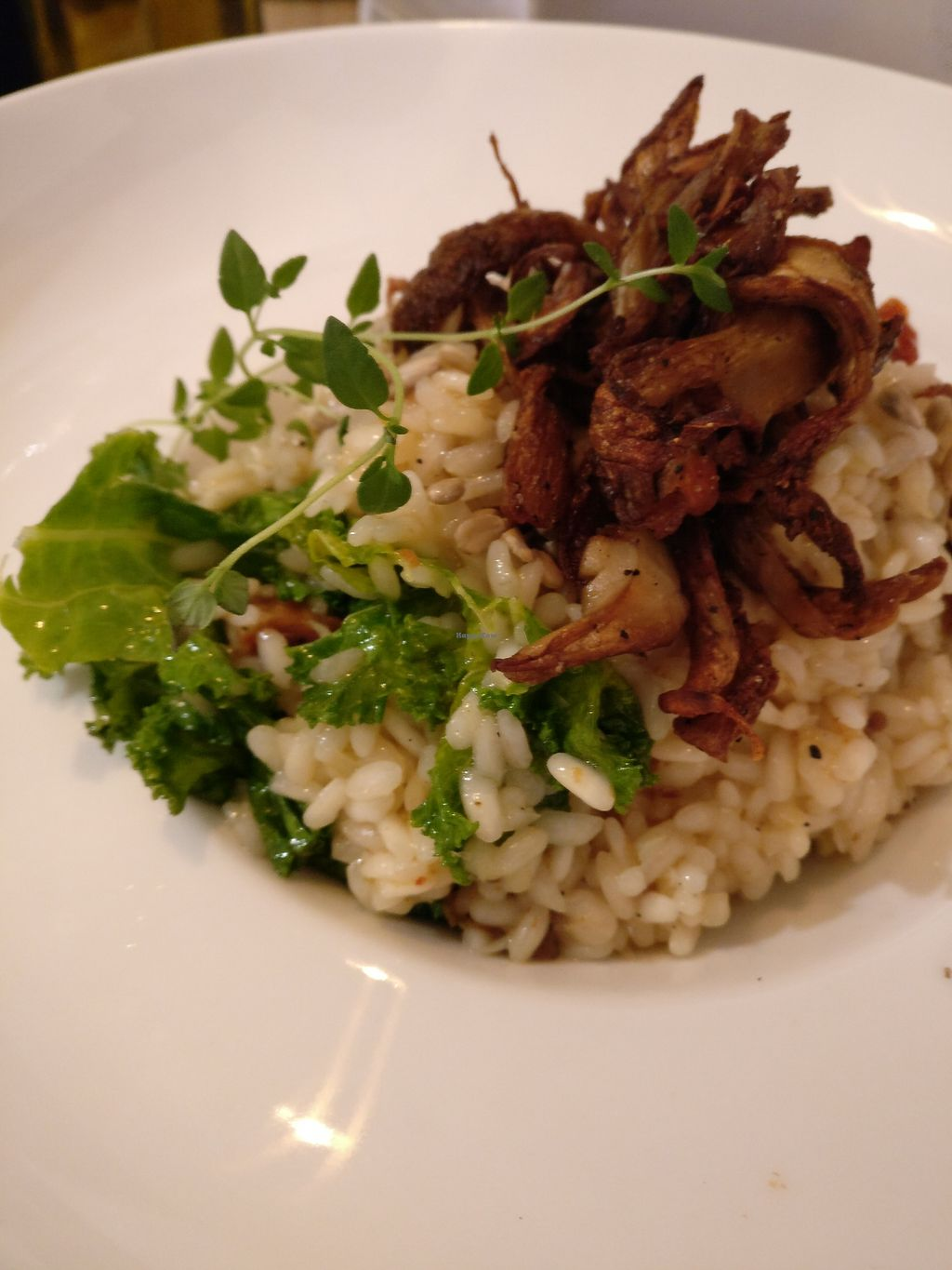 """Photo of Potrafka  by <a href=""""/members/profile/Agadooska"""">Agadooska</a> <br/>Barley risotto with crispy oyster mushrooms (delicious) <br/> August 26, 2017  - <a href='/contact/abuse/image/99610/297613'>Report</a>"""