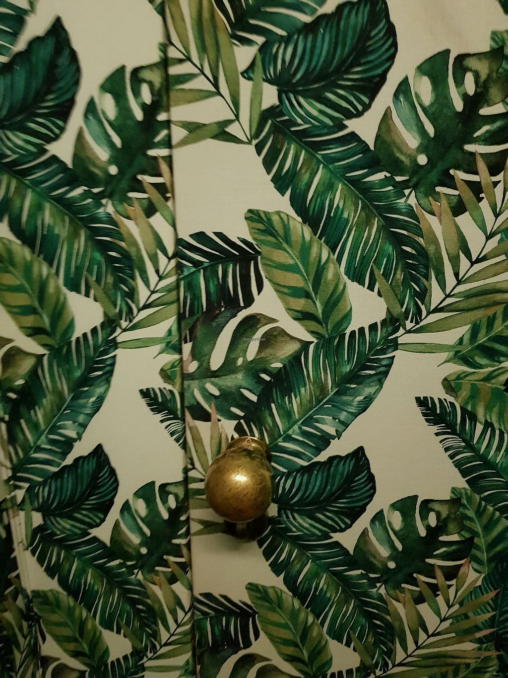 """Photo of Organic Caffe - Chiado  by <a href=""""/members/profile/SerenaA"""">SerenaA</a> <br/>everywhere is banana leaf! <br/> December 16, 2017  - <a href='/contact/abuse/image/99667/336286'>Report</a>"""