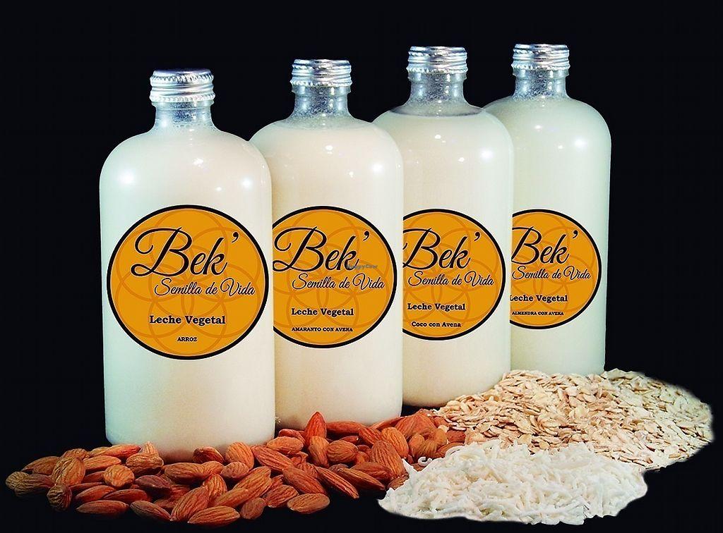 "Photo of Bek Semilla de Vida  by <a href=""/members/profile/LupitaValdiviezoRuiz"">LupitaValdiviezoRuiz</a> <br/>Vegetable milks Flavors: coconut, almond, amaranth and rice <br/> August 27, 2017  - <a href='/contact/abuse/image/99672/297688'>Report</a>"