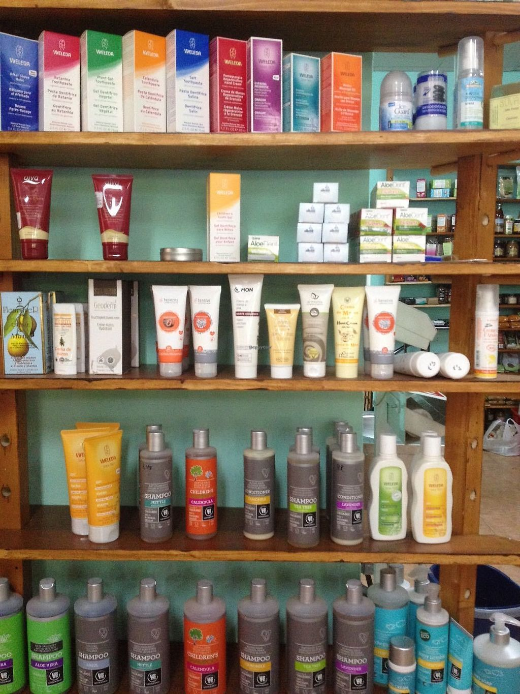 """Photo of Huerta Clarita  by <a href=""""/members/profile/AliceTahi"""">AliceTahi</a> <br/>So many different types of shampoo!  <br/> August 30, 2017  - <a href='/contact/abuse/image/99928/299097'>Report</a>"""