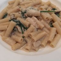 """Photo of Cafe Blossom - Upper West Side  by <a href=""""/members/profile/the.friendly.fig"""">the.friendly.fig</a> <br/>Vegan Pasta Alfredo  <br/> August 13, 2016  - <a href='/contact/abuse/image/12172/168047'>Report</a>"""