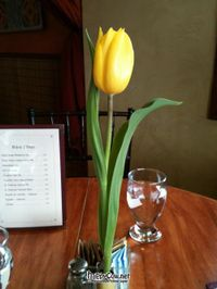 """Photo of Calactus Cafe  by <a href=""""/members/profile/TrayLanna"""">TrayLanna</a> <br/>Fresh flowers everyday <br/> March 9, 2012  - <a href='/contact/abuse/image/2916/29231'>Report</a>"""
