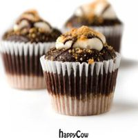"""Photo of Sweets from the Earth  by <a href=""""/members/profile/MKSFTE"""">MKSFTE</a> <br/>S'mores Cupcake <br/> September 16, 2012  - <a href='/contact/abuse/image/34329/37955'>Report</a>"""