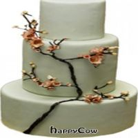 """Photo of Sweets from the Earth  by <a href=""""/members/profile/MKSFTE"""">MKSFTE</a> <br/>Apple Blossom Wedding cake <br/> September 16, 2012  - <a href='/contact/abuse/image/34329/37956'>Report</a>"""