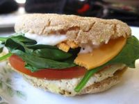 """Photo of VO2 Vegan Cafe  by <a href=""""/members/profile/Babette"""">Babette</a> <br/>Absolutely amazing tofu breakfast sandwich <br/> February 4, 2014  - <a href='/contact/abuse/image/34862/63698'>Report</a>"""