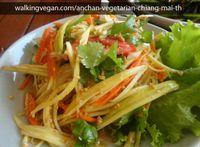 "Photo of Anchan Vegetarian Restaurant  by <a href=""/members/profile/walkingvegan"">walkingvegan</a> <br/>Mango salad <br/> April 9, 2014  - <a href='/contact/abuse/image/34920/67277'>Report</a>"
