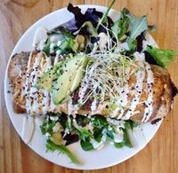 Photo of Superfresh Organic Cafe  by Stormethh <br/>The baked and covered burrito <br/> August 31, 2016  - <a href='/contact/abuse/image/36615/231519'>Report</a>