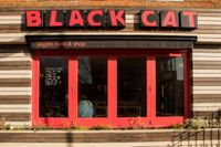 """Photo of Black Cat  by <a href=""""/members/profile/jon%20active"""">jon active</a> <br/>The Black Cat Cafe  windows bask in the Hackney sun! <br/> March 29, 2015  - <a href='/contact/abuse/image/41511/97265'>Report</a>"""