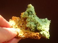 """Photo of Cruioso  by <a href=""""/members/profile/Cruioso"""">Cruioso</a> <br/>Gluten & Grain-free crackers (no rice, corn, or soy) with raw vegan paté <br/> August 30, 2015  - <a href='/contact/abuse/image/62744/115818'>Report</a>"""