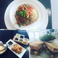 "Photo of Screaming Carrots  by <a href=""/members/profile/JeneeneRomero"">JeneeneRomero</a> <br/>Stir Fry Tempeh; Crispy Taro; Falafel sandwich  <br/> July 4, 2016  - <a href='/contact/abuse/image/69039/157736'>Report</a>"